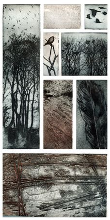 Buckenham Carr  Photopolymer and collagraph prints make up this assemblage based on the rookery at Buckenham Carr  by Kerry Buck