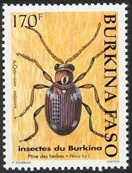 Stamp: Common Spider Beetle (Ptinus fur) (Burkina Faso) (Insects) Mi:BF 1845,Yt:BF 1280,WAD:BF 005.02