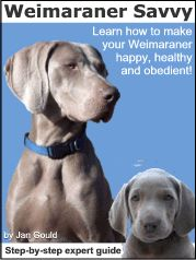 Weimaraner Guide. My Weimaraner is very well behaved but the health tips are always good.