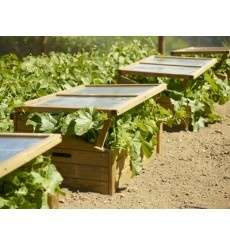 Si vives en zonas frías puedes necesitar una de estas magníficas #jardinera-invernadero, y así poder disfrutar de un #huerto en casa vivas donde vivas. $161 (aprox. según cambio). www.ecobrotes.es