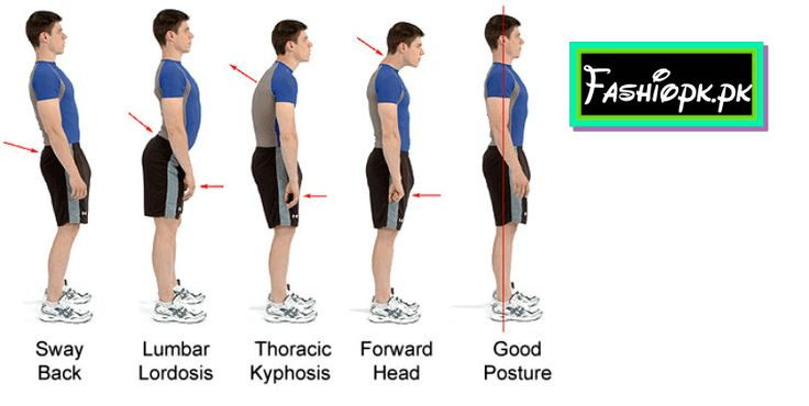 Eight Pick Protect Your Lower Back Bone Pain