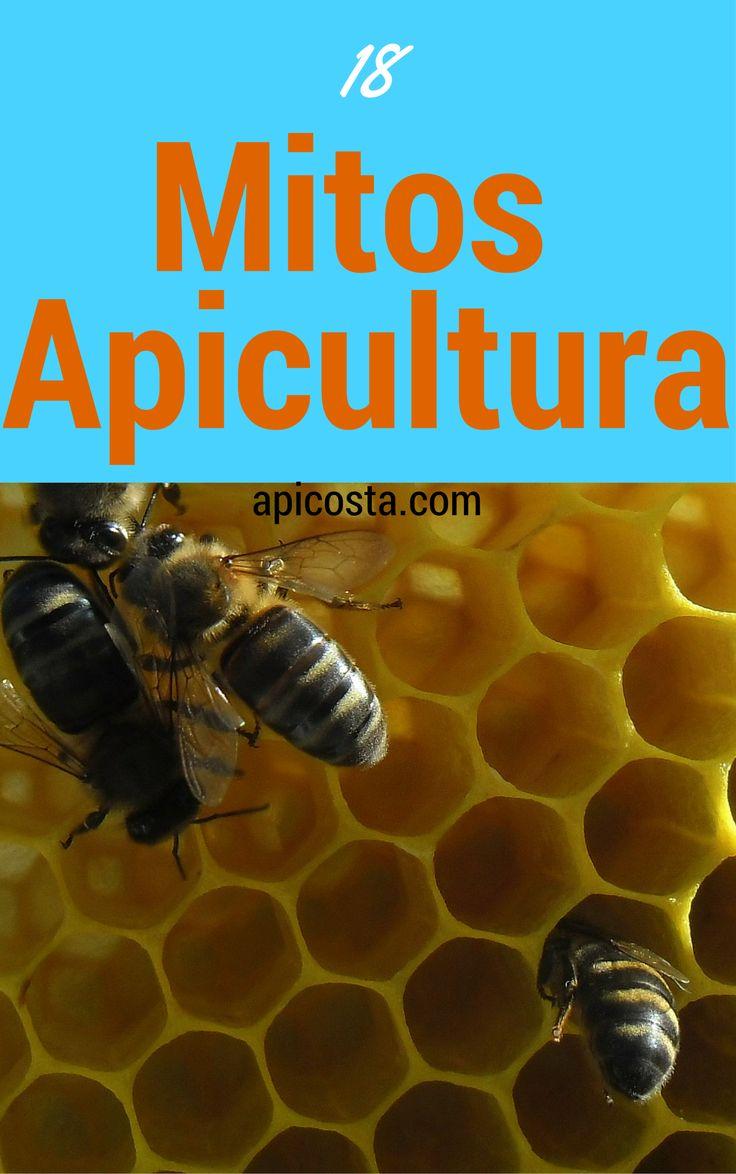 Quais os principais 18 mitos que existem na apicultura veja aqui                                                                                                                                                      Mais