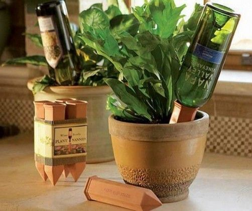 self watering wine bottle planter                                                                                                                                                                                 More
