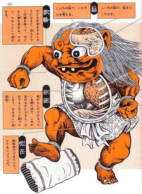 Yokai are a class of supernatural monsters in Japanese folklore. If you've ever wondered about their anatomy, Shigeru Mizuki made some illustrations to show you.