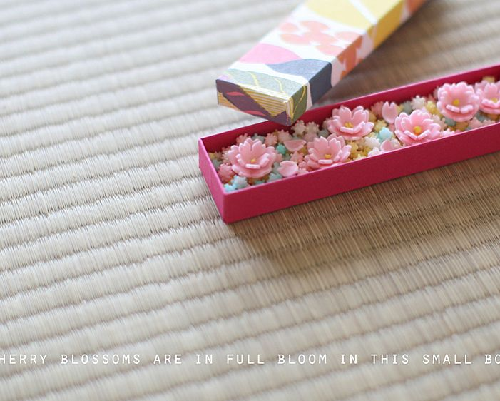 today, I made japanese confectionery nerikiri which express cherry blossom ▫️▫️▫️▫️▫️▫️▫️▫️▫️▫️▫️▫️▫️ おはようございます٩꒰๑• ̫•๑꒱۶♡ . 引き続き、寒い朝です❄️❄️❄️ . 干菓子が大好きで、 ずっと色々習いたいと思っているけれど、 専門学校ではない 単発のレッスンで教えてくださるところがあまりなくて、、 . 特に、雲平のレッスンは、一度ちゃんと受けてみたかったので、 先日参加した 紫をん先生(@shiwon.wagashi )のレッスンは、やっと、やっと、の、念願で、 本当に嬉しかった😭😭😭 . 早速帰ってから、 教えて頂いたレシピで、ずっと作ってみたくてたまらなかった、立体桜の雲平を作りました。 . これ、菊家さんの、立体的な「梅の花」の雲平を見た時から、 桜で作ってみたい、、と、ずっと思っていたもの。 . うーん、深桜(花びらの切り込みが深いもの)の大きめの型抜きがなかっだから、 土台の桜の形が イマイチ思っていた感じジャストではなかったけれど、…