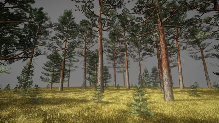 Kiefernwald by VIS-All 3D