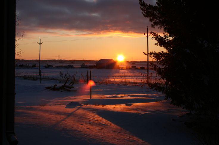 Järvikylä