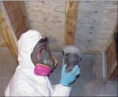 Mold Removal Miami - We have an outstanding team of black mold removal specialists that will inspect every corner and crevice of your home for the nasty toxic substance. We will then suit up and do battle with the black mold.
