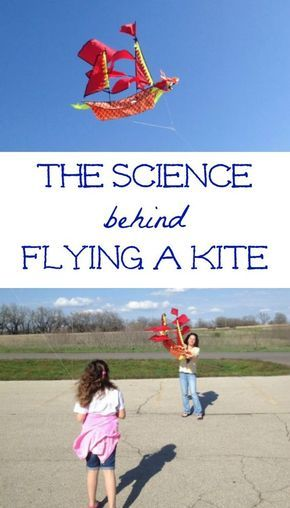 simple essay on kite flying One banker is so delighted by the kite flying (and, seemingly, by the  we bought  one of the easy kites and then drove to angel's gate park in.