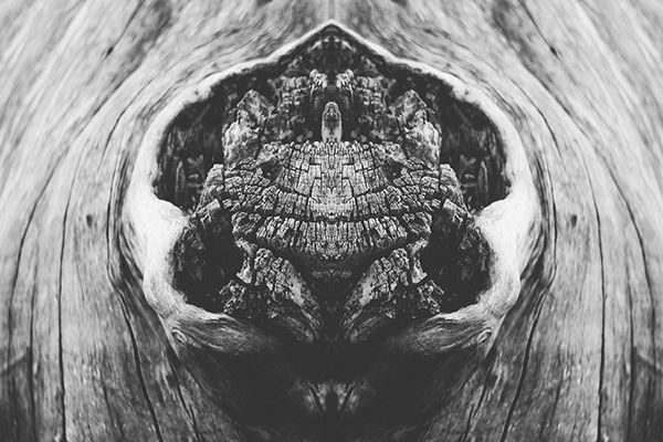 Symmetrical Landscape Photos Are Nature's Rorschach Test | The Creators Project