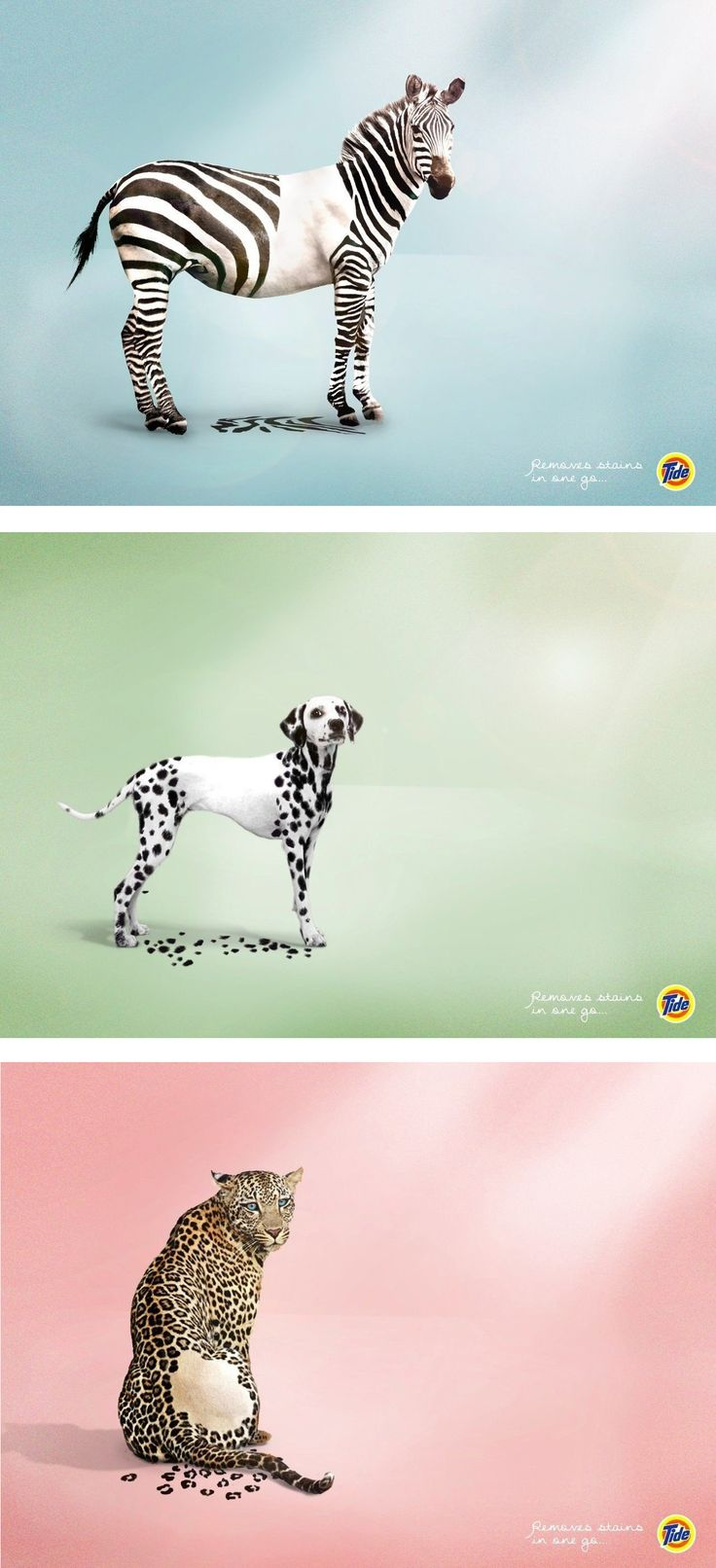 I really like this ad. It gives its exact point right from when u see the animal and then the Tide logo. I really like what they did here. Also the stripes/spots of each animal are laying on the ground as if they lost them. Well done
