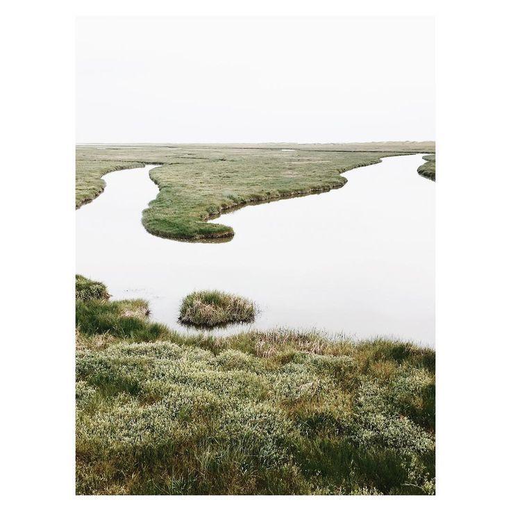 #minimal #minimalism #photography #isabelpettinato #green #sanktpeterording
