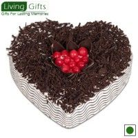 Gift A Plant Online,Send Unique Gifts Online,Online Gifts India,Birthday Plant Gifts,flowering plants in india,shop plants online india,Feng Shui Plants For Office