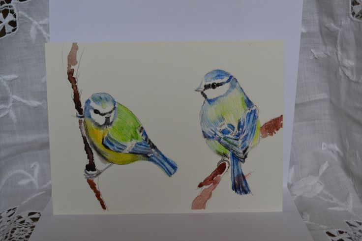 Hampshire Blue Tits by sarahNetLtd on Etsy