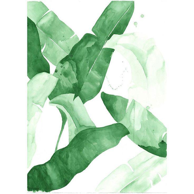 tropical green banana leaf art prints