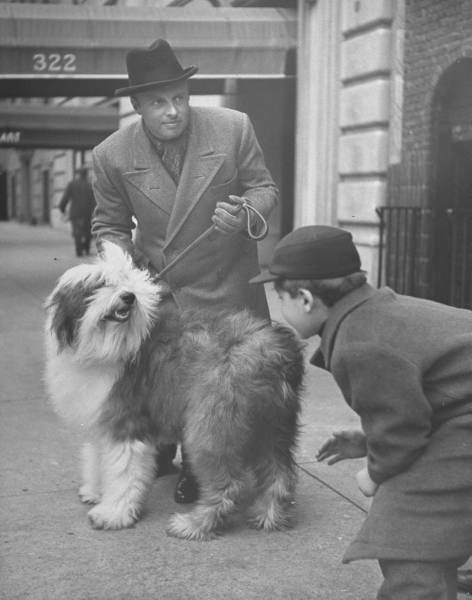 Music conductor Andre Kostelanetz with his sheep dog -NYC - Photo by Nina Leen - 1944