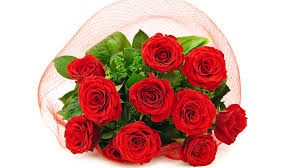 http://www.webmasterground.com/member.php?u=28475  Flower Delivery Deals  Discount Flowers,Flowers.Com Coupon,Flower Coupons,Flowers.Com Coupon Code,Flower Deals,Flowers.Com Coupon Code,Affordable Flowers,Inexpensive Flowers,Discount Flower Delivery,Flowers Coupon,Flower Delivery Coupons,Flowers.Com Coupons,Affordable Flower Delivery,Inexpensive Flower Delivery,Flower Coupon Codes,Flower Delivery Express Coupon