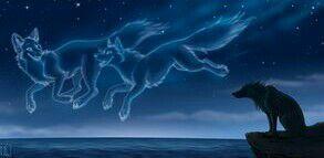 Vlčice Naryn a vlk Moru jsou nejlepší přátelé ale co když je někdo ro… #adventure # Adventure # amreading # books # wattpad