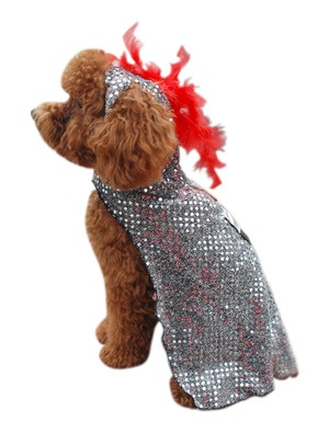 Knight Dog Costume by Anit on Gilt Home