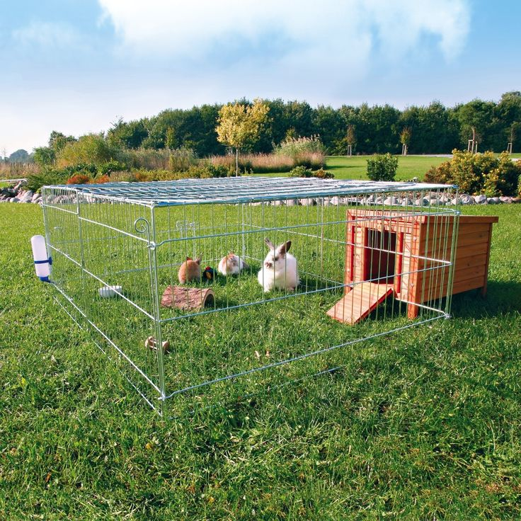25 best ideas about outdoor rabbit hutch on pinterest for Outdoor guinea pig cage