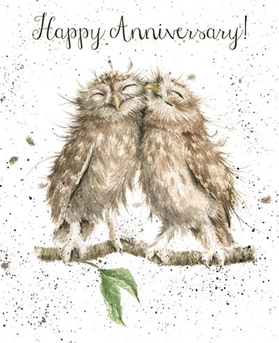 Owls anniversary Card - Wrendale Designs