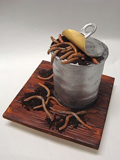 "One of the projects from my book ""Twisted Cakes"" available everywhere books are sold.Can of worms cake by debbiedoescakes, via Flickr"