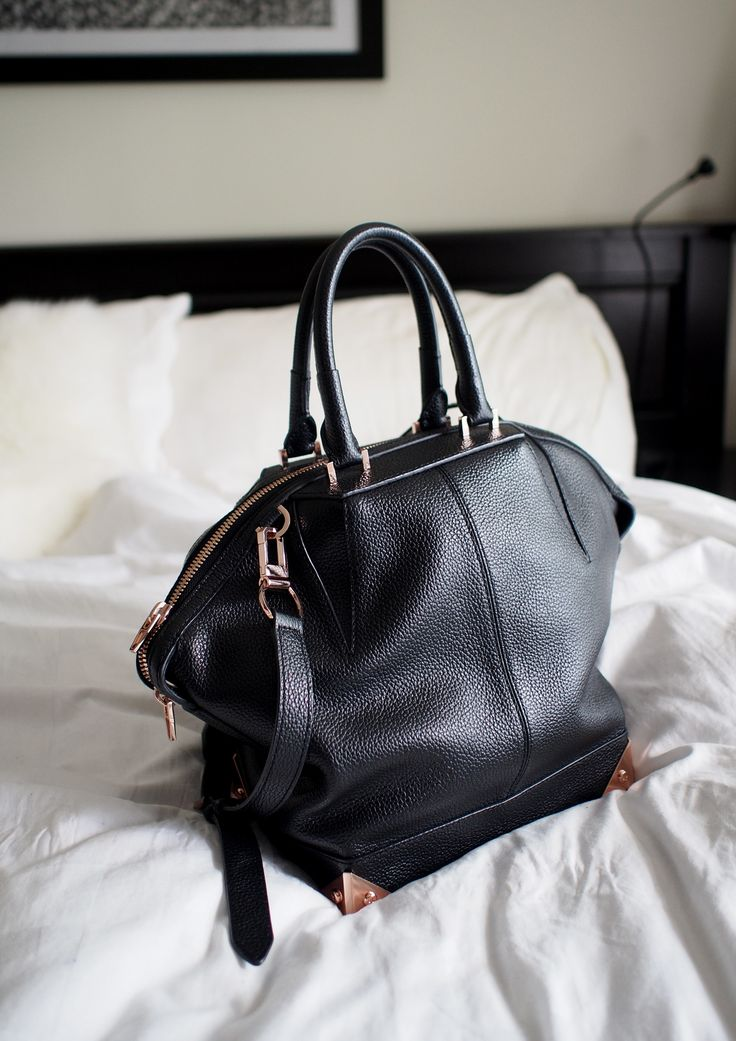 Alexander Wang Emile bag