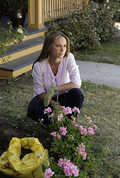 Melinda Gorden {Spring + Flowers}