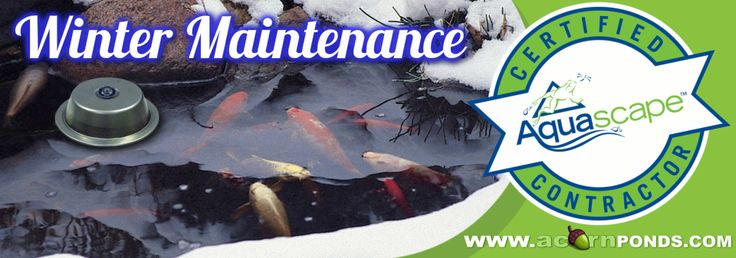 Winter Maintenance|Pond Cleaning|Rochester - NY-Acorn Ponds & Waterfalls