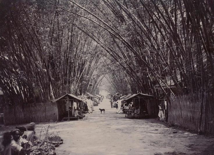 bambu, jalan dan pasar tanjungkarang, lampung 1894
