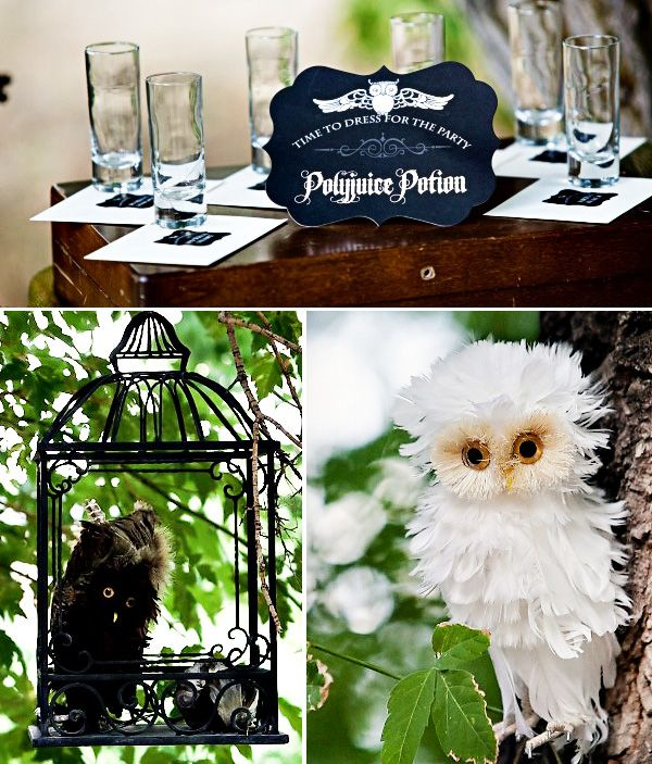 Harry Potter themed party - very cool!