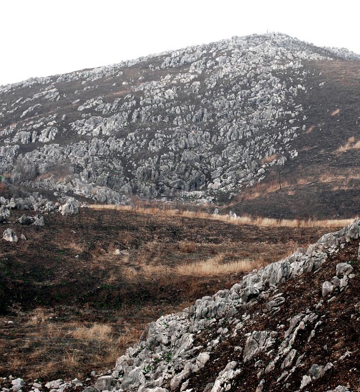 秋吉台 Akiyoshidai is the largest karst plateau in Japan