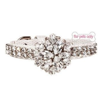 FOR PETS ONLY-ICE NIGHT COLLAR SPECIAL COLLECTION