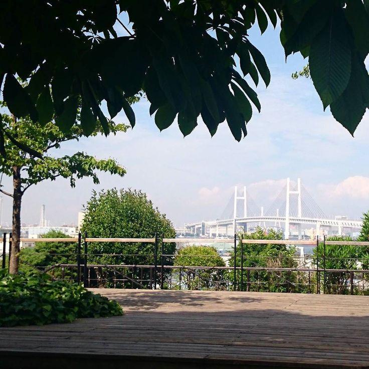寒い日の過去ネタシリーズ(;; #横浜 #初夏  #港の見える丘公園 #ベイブリッジ  #空 #公園 #青空  #sky #skyline #bluesky #japan #yokohama #park #sea #landscape #spring #summer #afternoon #sun #shadow #green #blue  #オズハマラブ