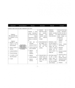 Nursing Care Plan (Impaired Skin Integrity)