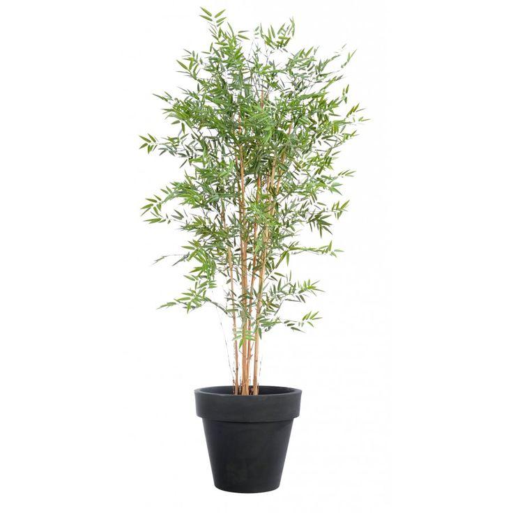 1000 id es sur le th me faux bambou sur pinterest for Faux bambou exterieur