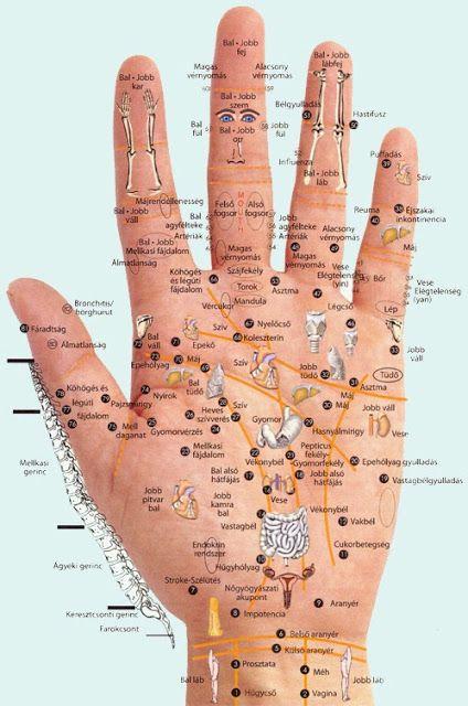 Nézd meg az oldalon a szebbnél szebb képeket és hasznos cikkeket!: A kéz reflex pontjai! A kézben benne van az egész ember!
