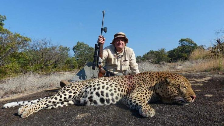 Petition · Bushman Safaris: Stop big game hunting · Change.org