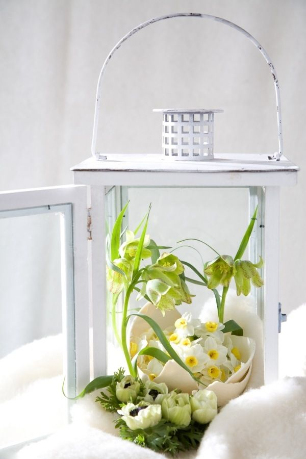 Frühlingsdekoration ideen laterne eierschalen blumen
