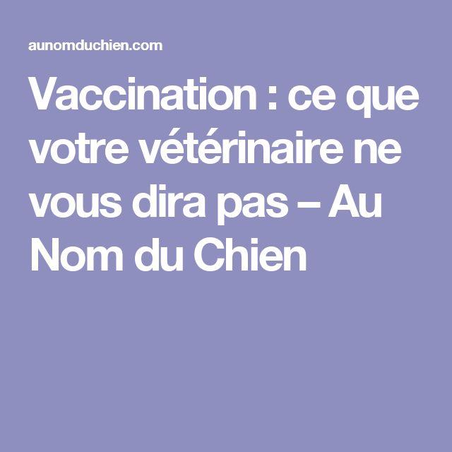 Vaccination : ce que votre vétérinaire ne vous dira pas – Au Nom du Chien