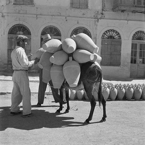 Αναζητώντας το καλοκαίρι μέσα από τις συλλογές του Μουσείου Μπενάκη:  Φωτογραφία της Βούλας Παπαιωάννου. Φωτογραφικό Αρχείο Μουσείου Μπενάκη #DiscoveringSummerthrough the#BenakiMuseumCollections:  #Photo by Voula Papaioannou. #Benaki #Museum #PhotoArchive  #benakimuseum #pic #instapic #picoftheday #bnw #instagood #instalike #like4like #instagreat #iloveart #instamoment #lifo #ig_greece #photo #art
