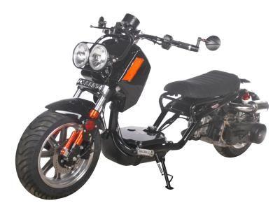 "Maddog PMZ150-21 150cc Scooter Maddog GEN IV ! 150cc Honda Ruckus Clone Scooter. Automatic Transmission, Front Disc/Rear Drum Brakes, 12"" Aluminum Wheels, Metallic Paint, Performance Muffler"