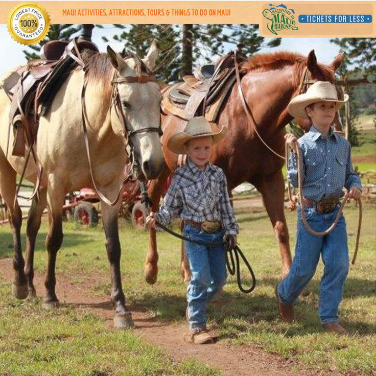 The Maui #horseback riding adventure winds its way through the rolling hills. For more http://mauiticketsforless.com/horseback-riding/85/maui-horseback-riding-ironwood-ranch-maui.html#.WDGQw9IrLIU
