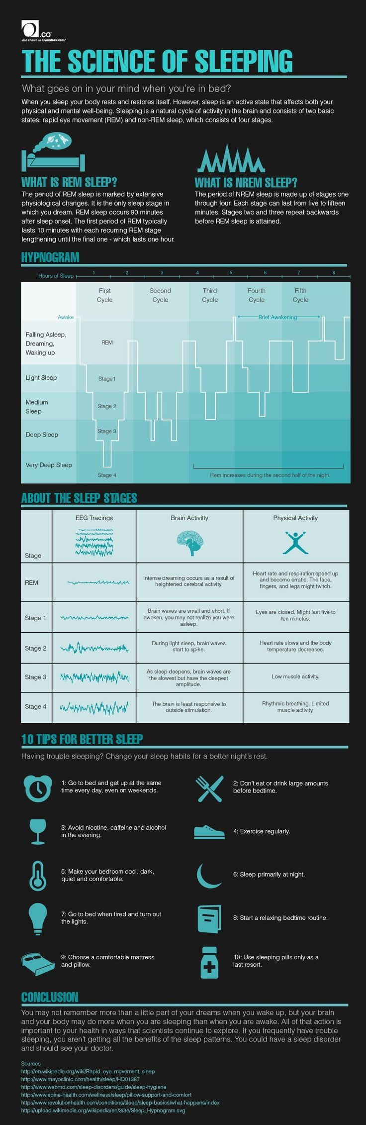 The Science of Sleeping Infographic-- This infographic is about the different stages of sleep and how the body reacts to each stage. It also touches on REM sleep, and what it does to the body.