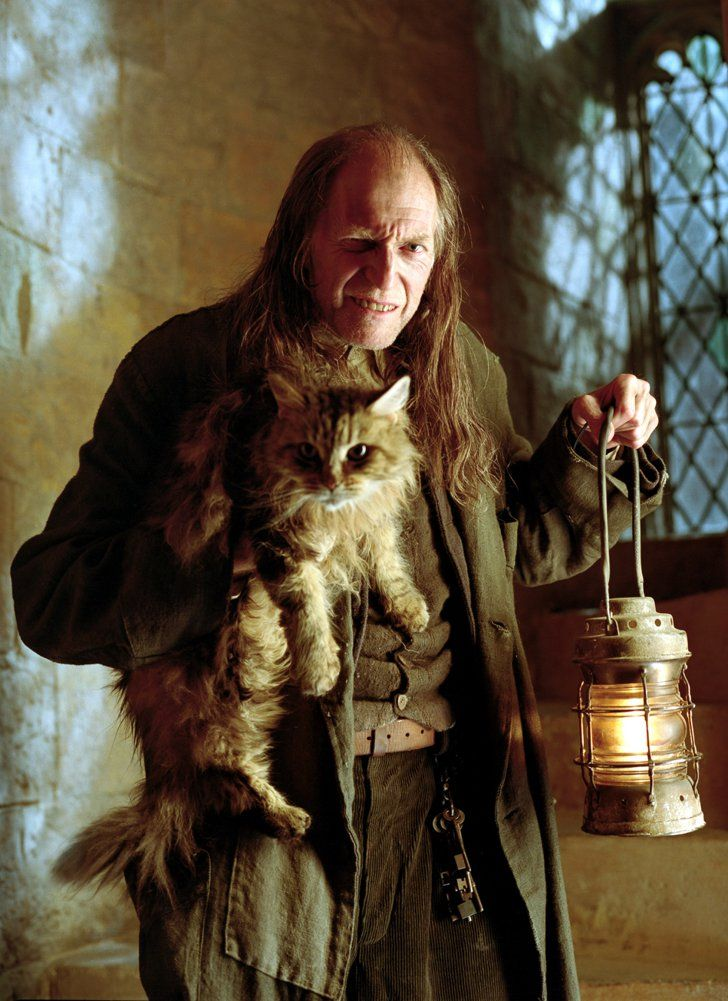 Pin for Later: 7 Harry Potter/Game of Thrones Crossovers You Probably Didn't Know About David Bradley as Argus Filch Bradley is also Filch, the Hogwarts caretaker, who creeps out the kids with his cat, Mrs. Norris.