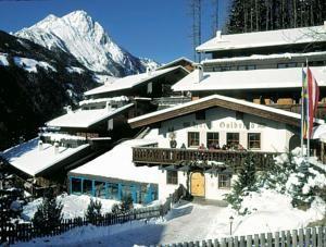 Hotel Goldried ligger 1000 m over havets overflade og har panoramaudsigt til Hohe Tauern-bjergene samt landsbyen Matrei i det østlige Tyrol.