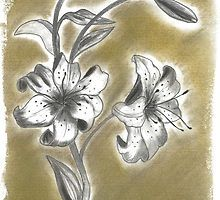 Lilium in charcoal (2 of 3) by Annalisa Amato