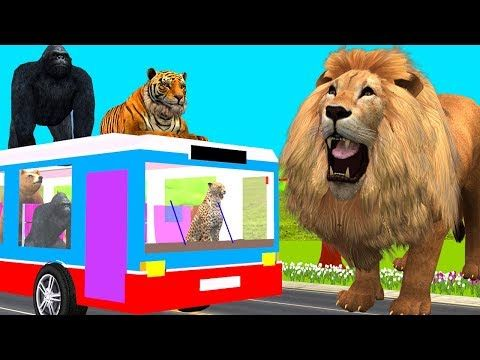 (11) Finger Family Rhymes   Wheels On The Bus Rhymes   Animals Nursery Rhymes   Rhymes For Kids - YouTube