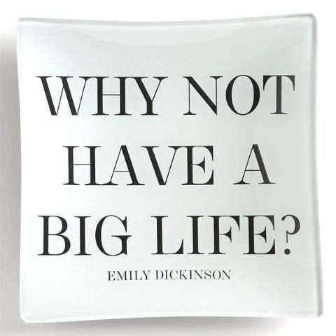 Image result for why not have a big life emily dickinson