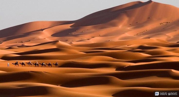 이곳은 사구이다. 사구란 모래로 이루어진 언덕으로 사막에서 주로 볼 수있다. 모래가 바람에 의해 이동하며 쌓이는 것으로 경사가 다르다. 나중에 암석이 된 후 단면을 보면 바람의 방향을 알 수있다. 사구는 점점 이동하며 바람의 세기, 입자의 양으로 여러 모양과 크기로 생성된다.